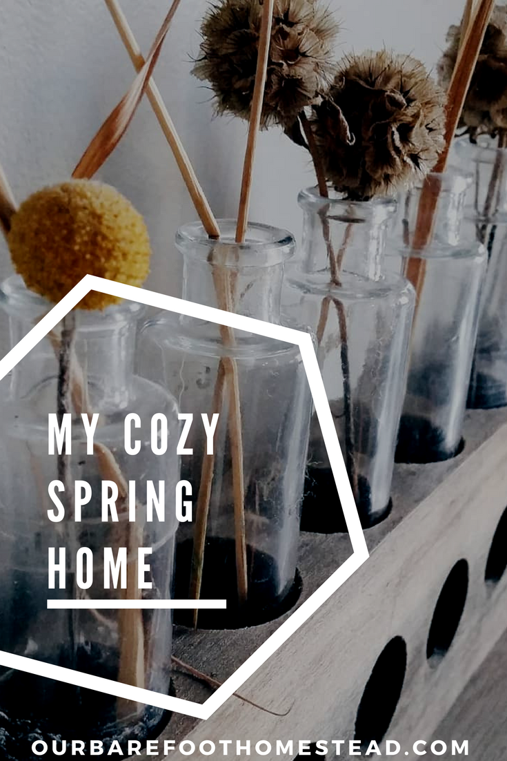 My Cozy Spring Home - Follow along in Instagram for a peak into #mycozyspringhome